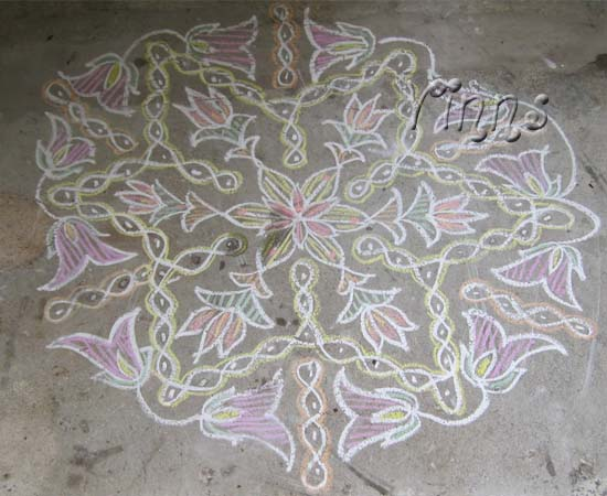 Sikku kolam with flowers