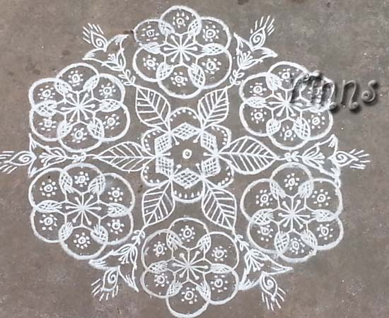 Muggulu, Big, Rangavalli, Rangoli, Evening, Small
